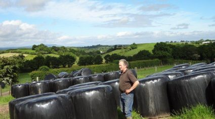 Managing grass to produce fodder