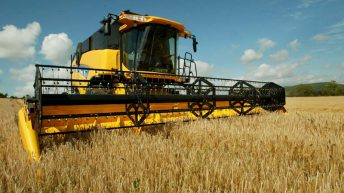 Average tillage farm income to fall by €14,000 in 2016 – Teagasc