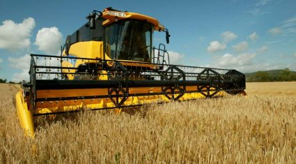 Good yield for tillage crops