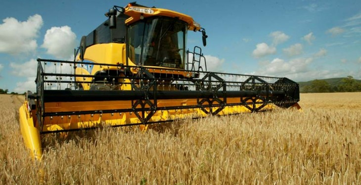 Land under cereals down 3.8%