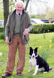 Sheepdog bob sells for world record sum