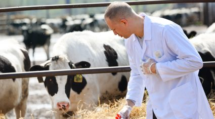 Vets play key role in farm efficiency and expansion