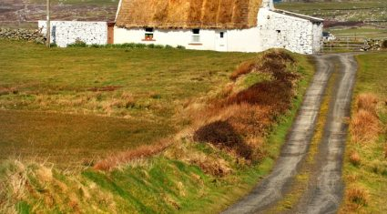 Thatch cottages grant under fire