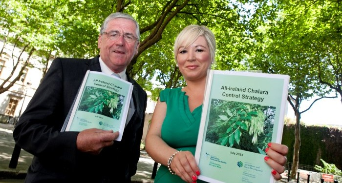 Strategy to control Ash Tree Chalara Dieback