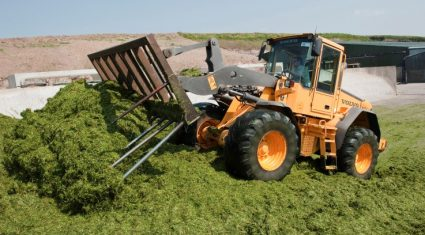 "IFA welcomes ""Excellent grass growing conditions"""