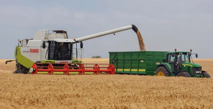 Barley going for gold as first harvest yield a hit