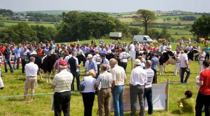 Top awards at IHFA Open Day