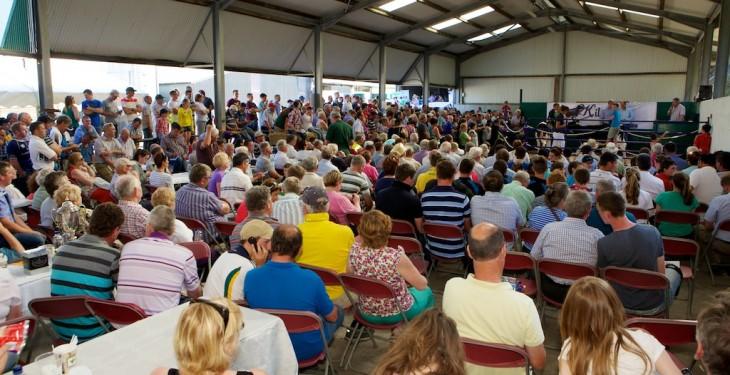 Journal : IHFA open day in Cork