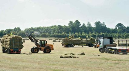 Farming determination, world-class hay harvest and storm damage #Ettg