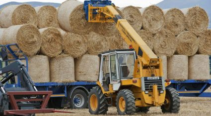 Need for straw imports into Northern Ireland questioned