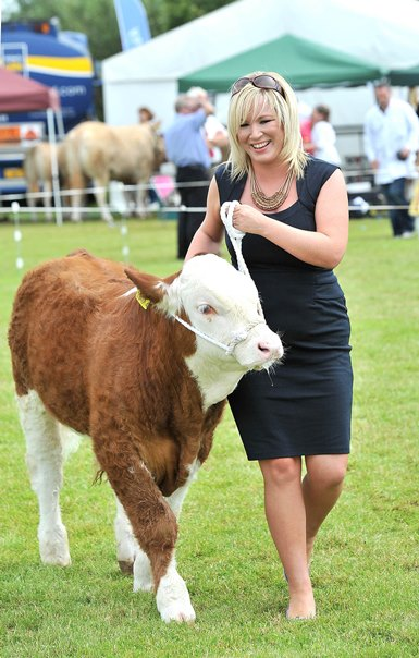 Official Brucellosis-free status in sight for Northern Ireland