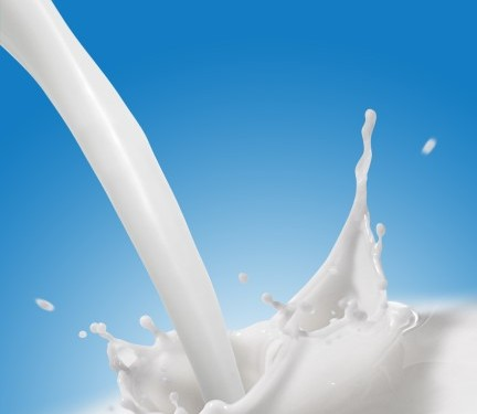 'Flavoured milk to make a big impact on future drinks markets'