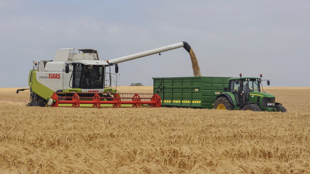 2014 set to be record year for world cereal production