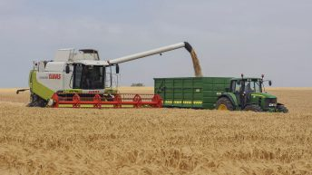 Cereal crops and potato production estimated to fall in the North this year