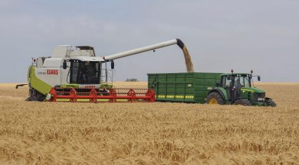 Is barley the biofuel option for the future?