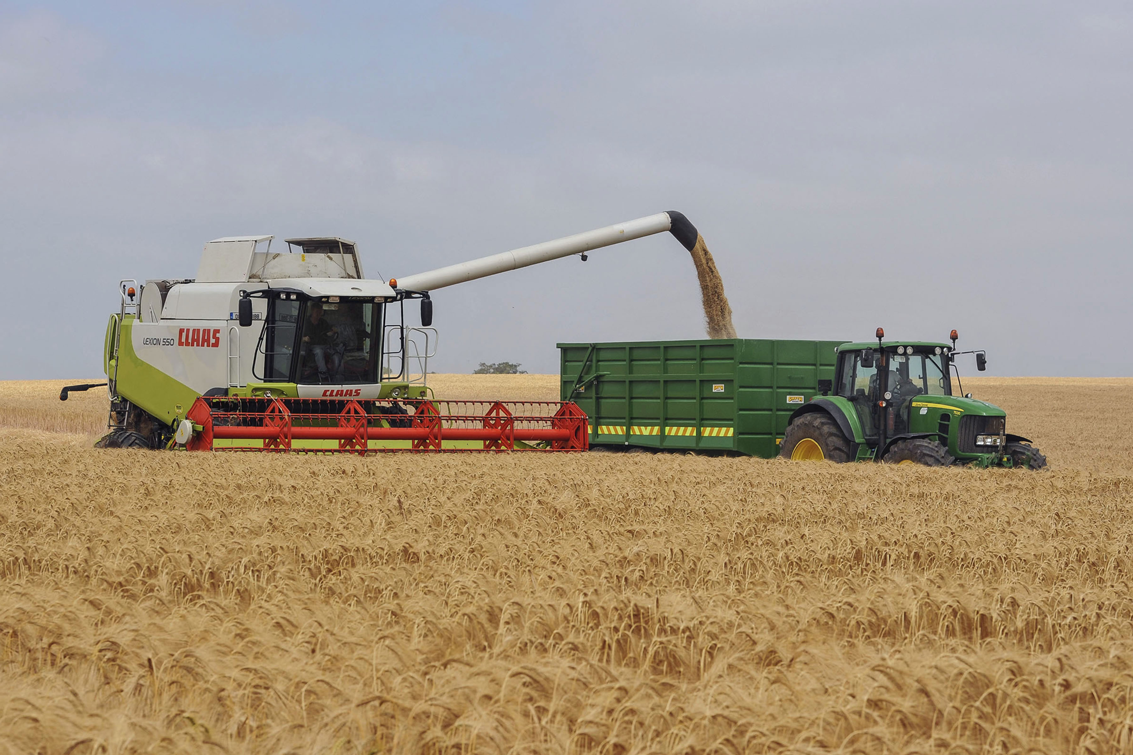 News 1 - First Harvest In 2013