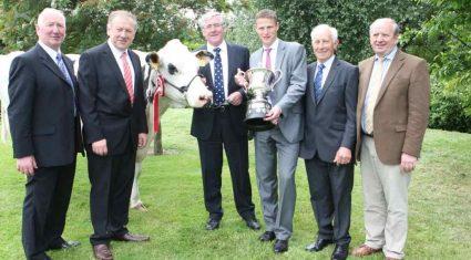 Diageo Baileys Irish Champion Dairy Cow
