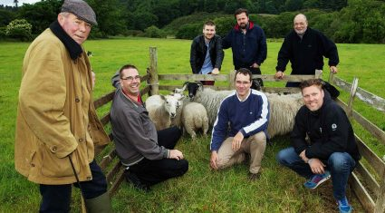 Sheep-herding with Tourism Ireland