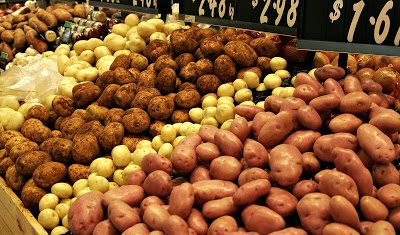 Early signs of a good season for Irish potatoes