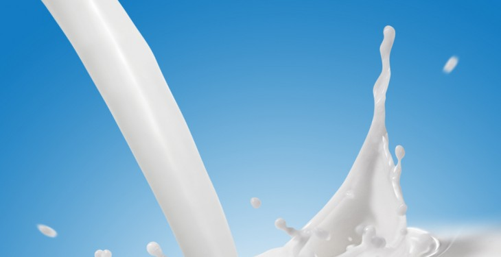 US milk production up 1.7% in February