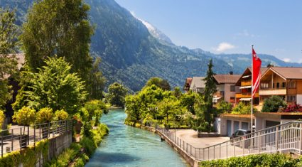 BVD: The Swiss experience