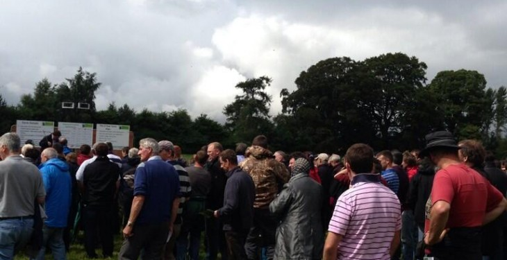 700 beef farmers at Teagasc Better Farm Open Day