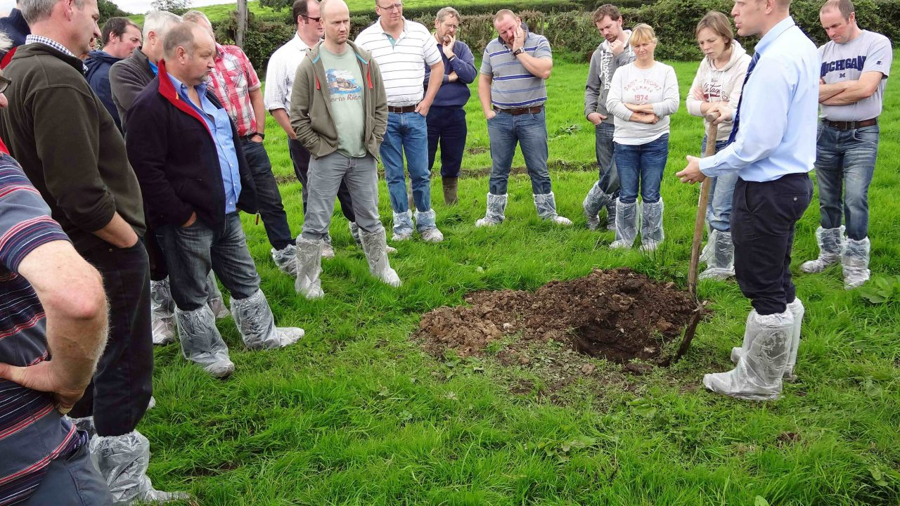 Improving soil and sward performance
