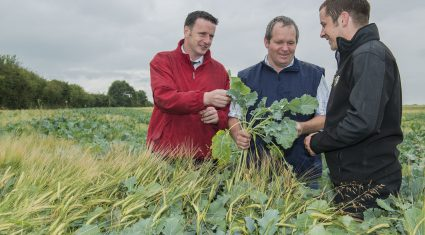 Tipperary co-op prepares for winter forage storage
