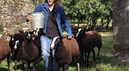 This week's farmer of the tweet Zwartbles Ireland