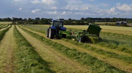 Krone Big X 1100 silage demonstration day