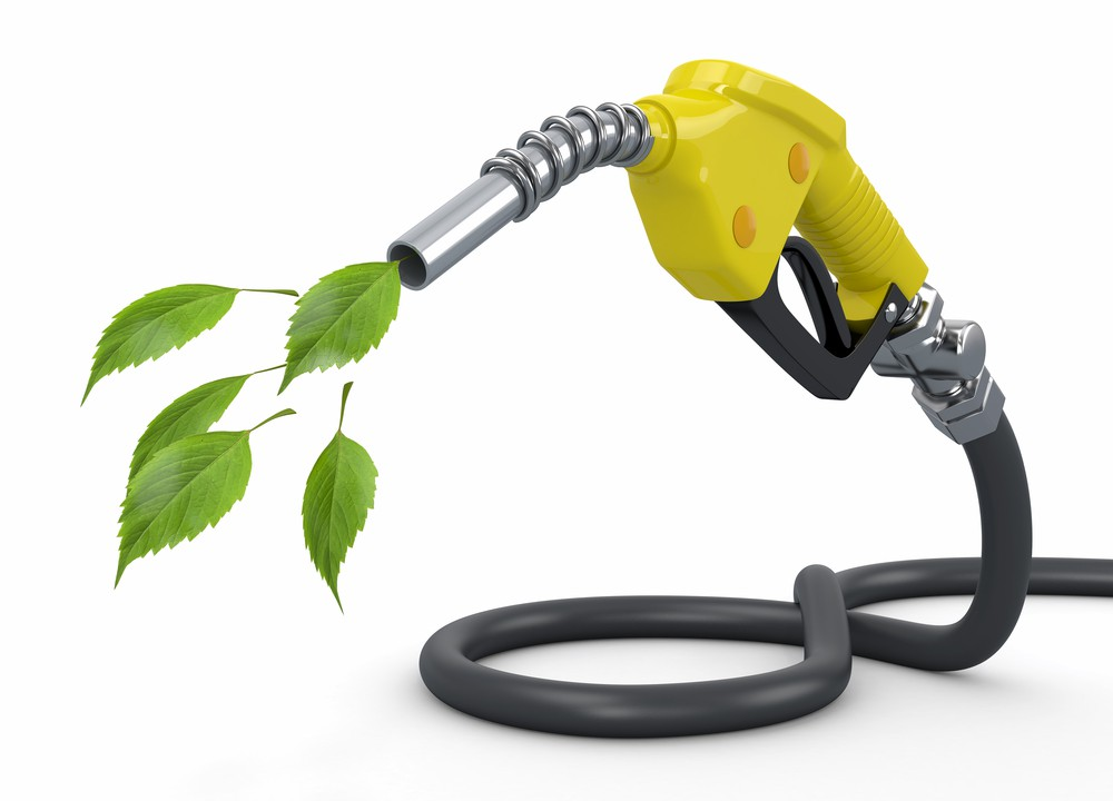 Burgers to biofuel: ABP subsidiary scoops sustainability award