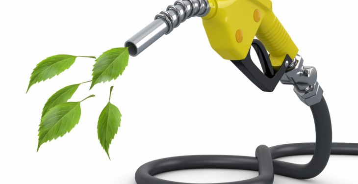 'Crop biofuel component of EU transport fuels could be slashed in half'