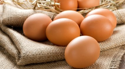 'Free range' status of eggs at risk from compulsory housing due to avian flu
