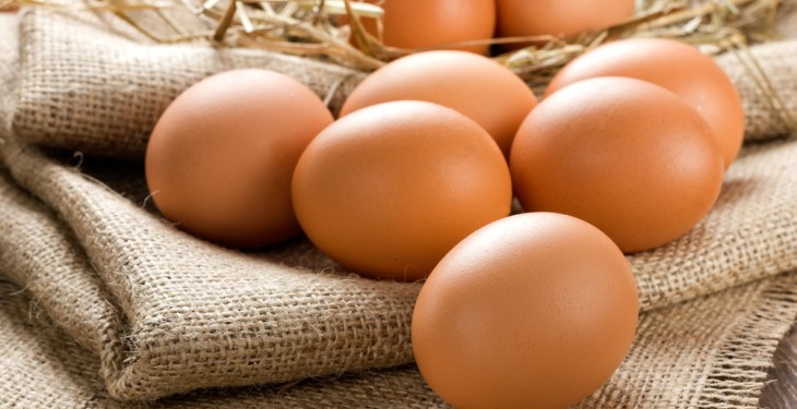 Dutch police arrest 2 suspects over egg scandal