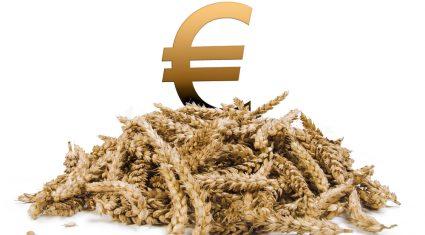 Increase costs threaten grain sector