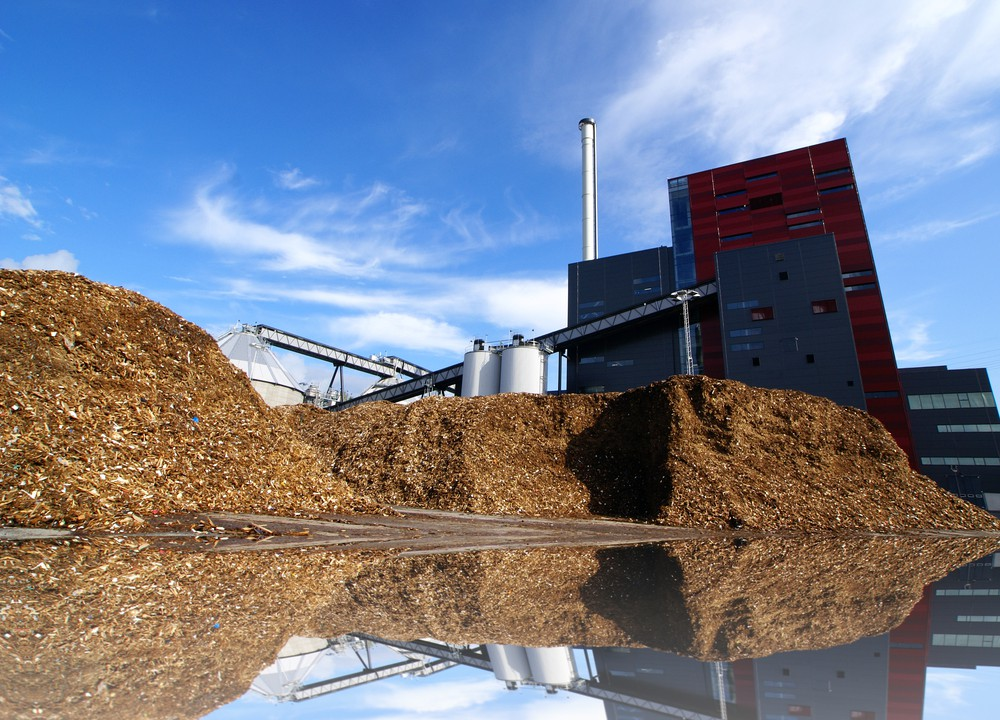 Ireland's energy crops at a cross-roads