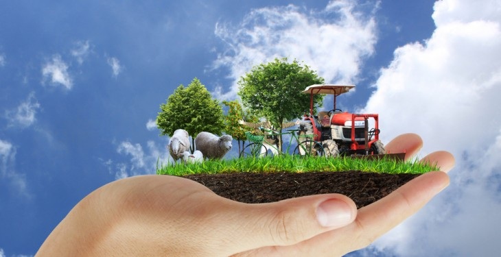 Agri-sector plays crucial role in economy