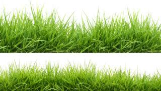 Greener pastures, new grass profit index explained