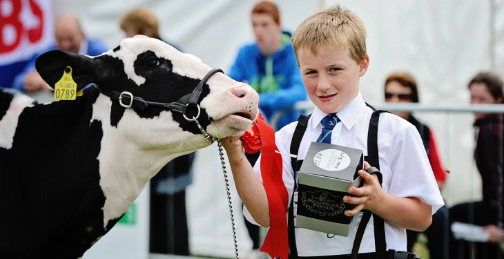 Winners at the Tullamore Show