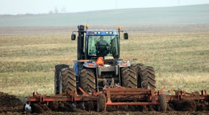 Ukrainian wheat production could fall by a third in 2016