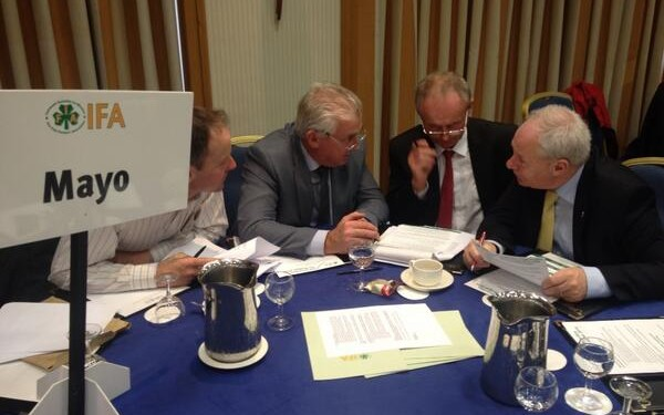 Investment in agriculture key to economic recovery, IFA