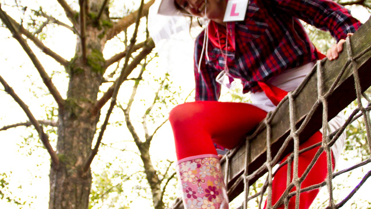 What do Limousin cattle, Belclare ewes and Irish hen parties have in common?