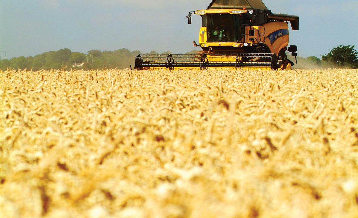 UK facing 2 million hectare land shortfall by 2030