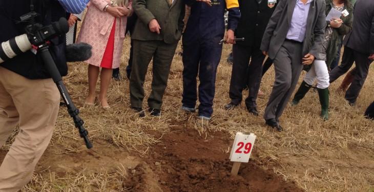 President hails Irish agriculture