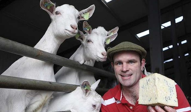 This Week's Farmer of the Tweet: Michael Finnegan