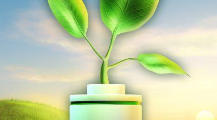 Comment: Grasstec, heavier soils reaping rewards as light soils dry up again