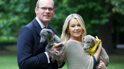 Chip and check your dog, minister launches national microchipping month