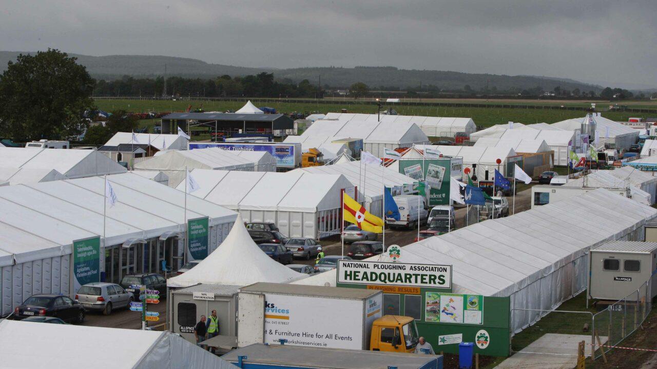 The best of Irish livestock, showcase at the Ploughing