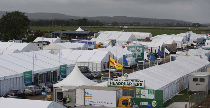 The best of Irish livestock, showcase at the Ploughing