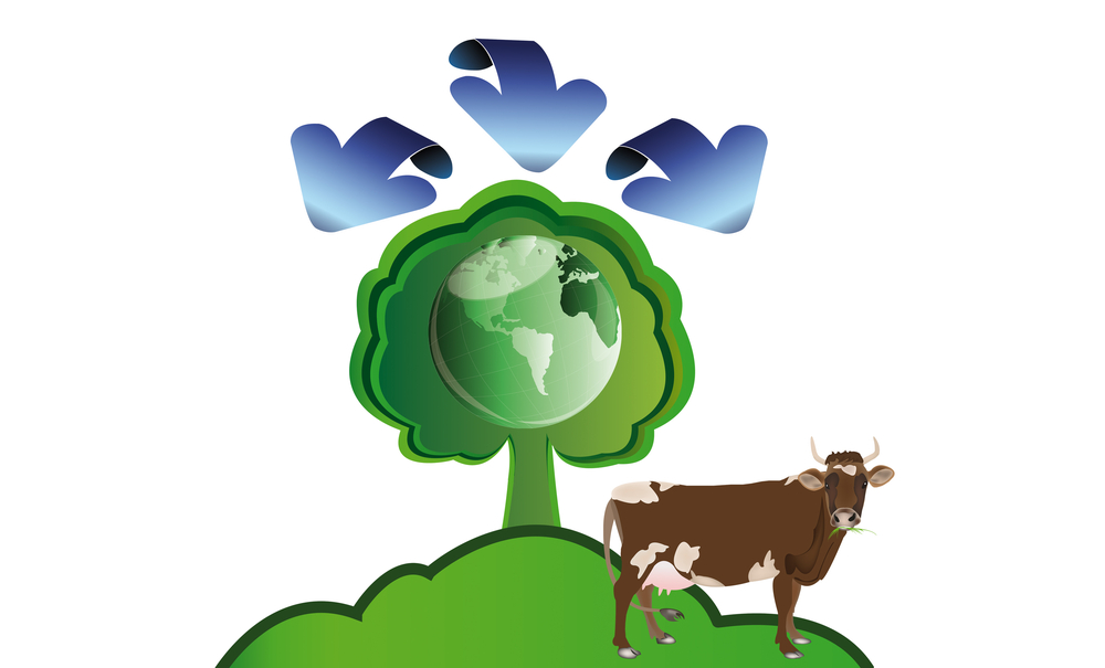 Question the direction of beef production at Global 500